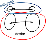 Desire And Adhesion